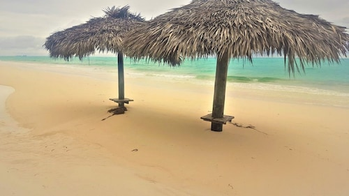 Paradise Beach Whole Property: 4 Beach Houses,