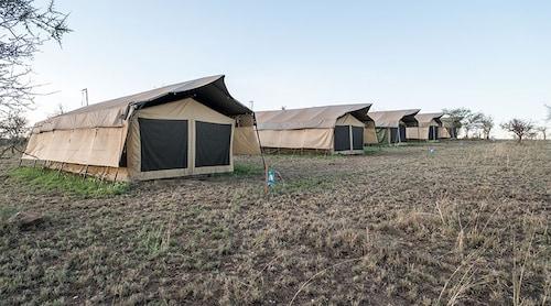 Serengeti Wildebeest Camp, Serengeti