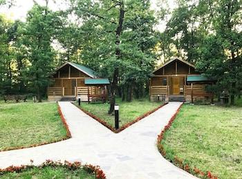 Sakarya İl Ormanı Tabiat Parkı Konaklama Evleri