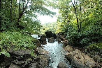 Hotel - Durshet Forest  A Nature Trails resort