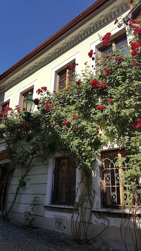 . House of Roses