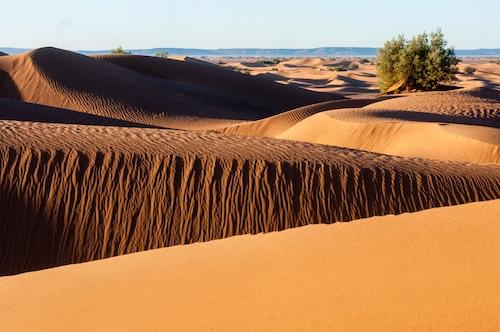 Desert Bivouac, Ouarzazate