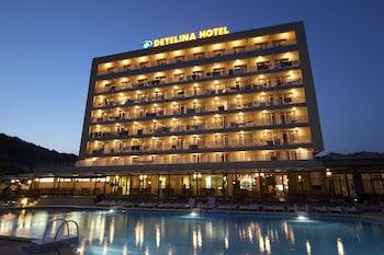Hotel - Detelina Hotel
