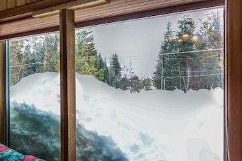 The Buckhorn Cabin Vacation Home 2 Bedroom