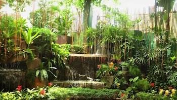 CASA VERDE HOTEL & EVENTS CENTER Garden