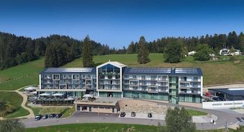 Hotel - Hotel Edita