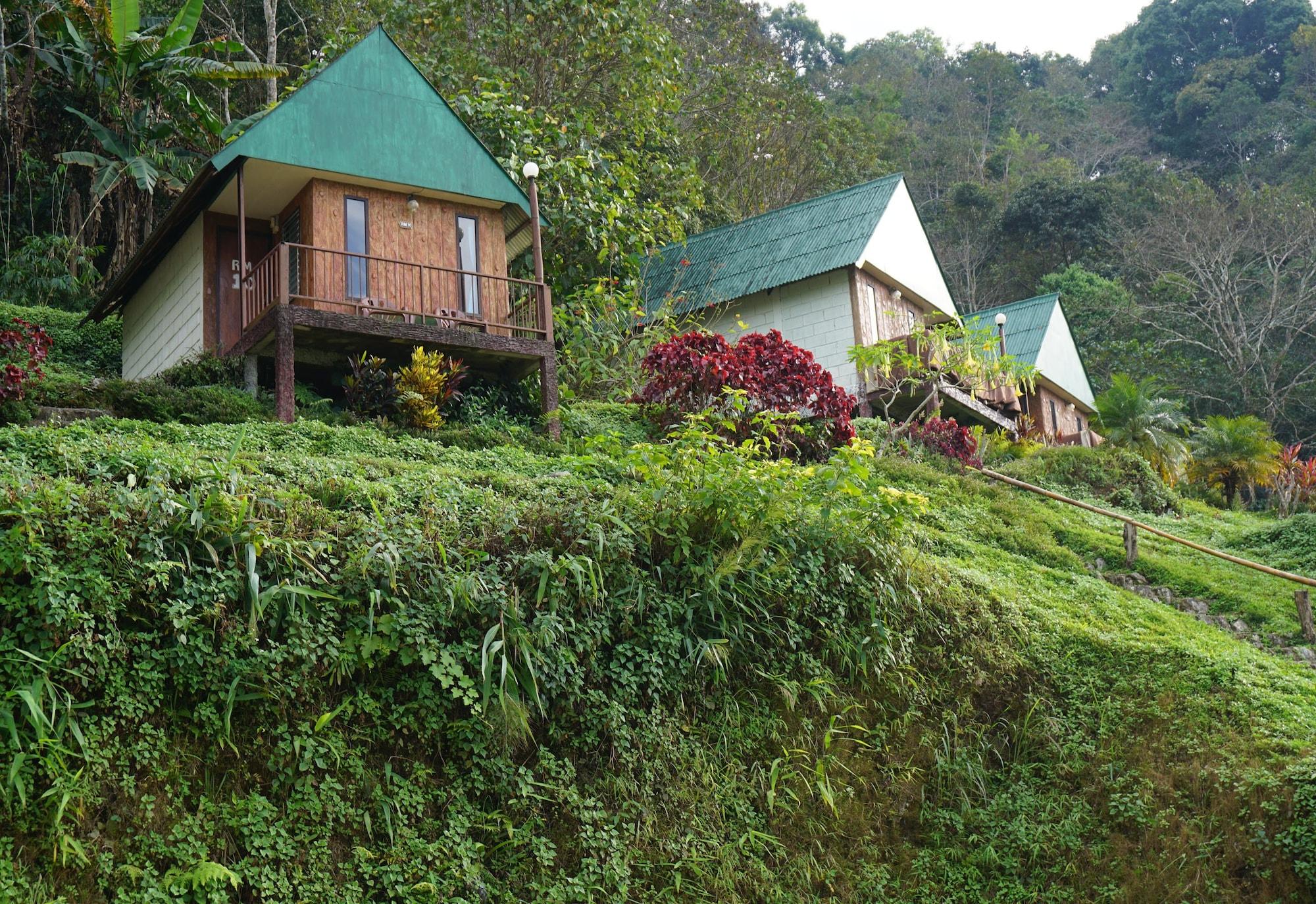 Phu Mok Camp, Thoeng