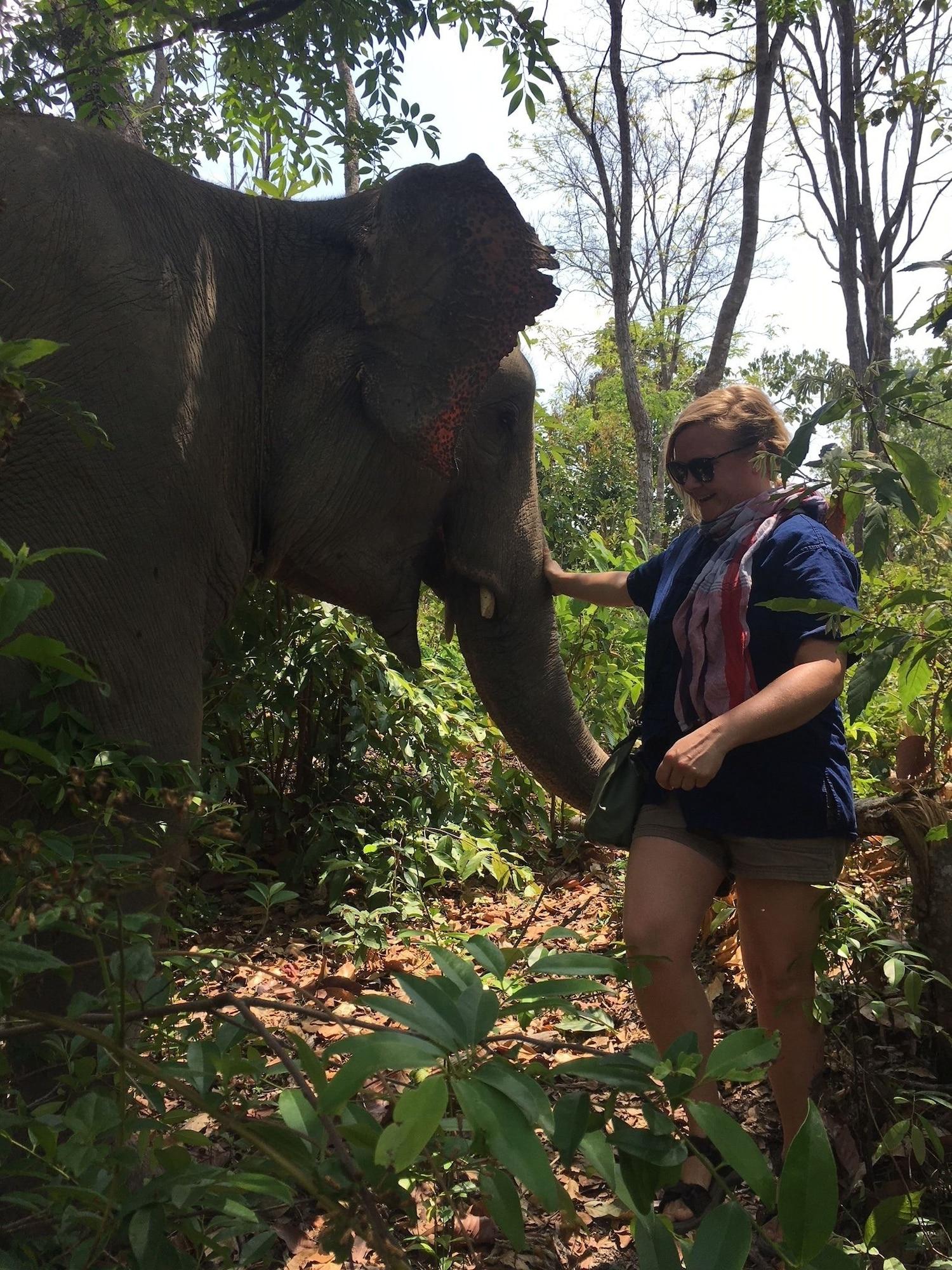 Mr.Jungle Trek House, Muang Chiang Mai