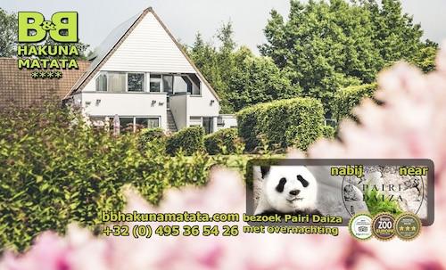B&B Hakuna Matata, Oost-Vlaanderen