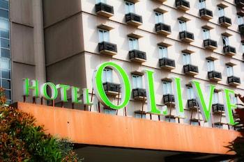 Hotel - Hotel Olive