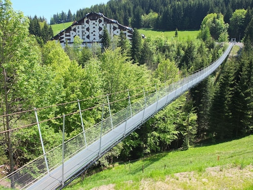 Apartment With one Bedroom in Torgon, With Wonderful Mountain View and, Monthey