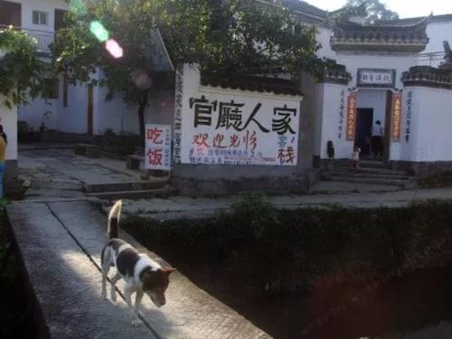 Wuyuan Qingyuan Guanting Guest House, Shangrao
