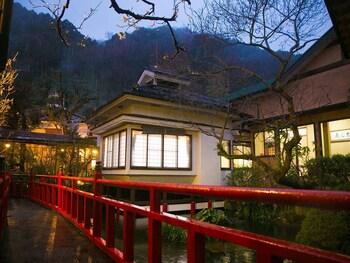 Hotel - Motoyu Ryokan Atsugi Iiyama Onsen