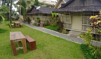 NALU SURF CAMP Garden
