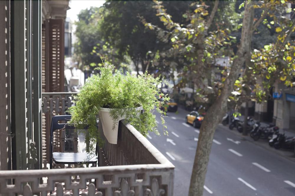 アムラ バルセロナ カスペ