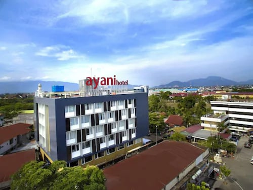 __{offers.Best_flights}__ Ayani Hotel