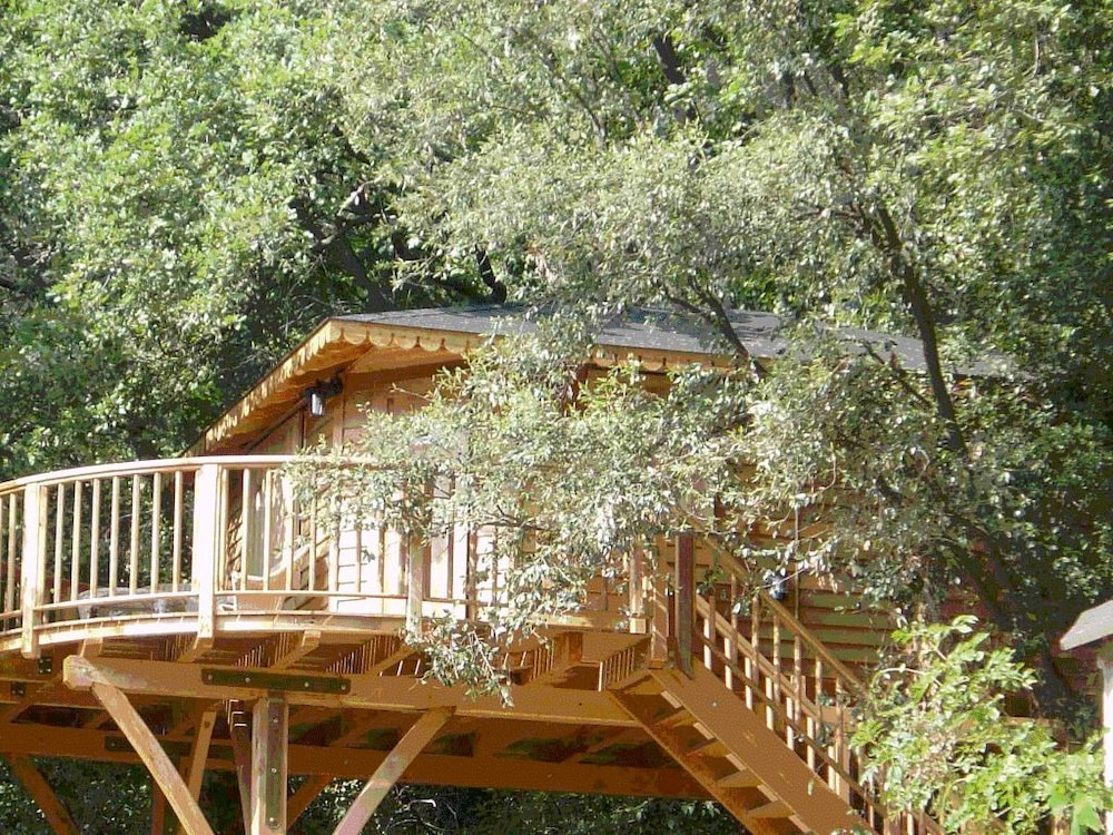 Orion Tree houses