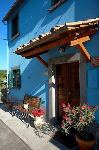 Blue House, Viterbo