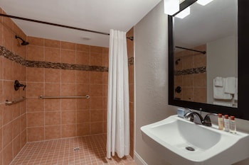 Bathroom at Hawthorn Suites by Wyndham Kissimmee Gateway in Kissimmee