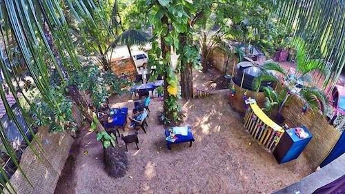 The Funky Monkey, South Goa