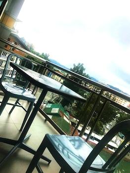 METRO PINES INN Terrace/Patio