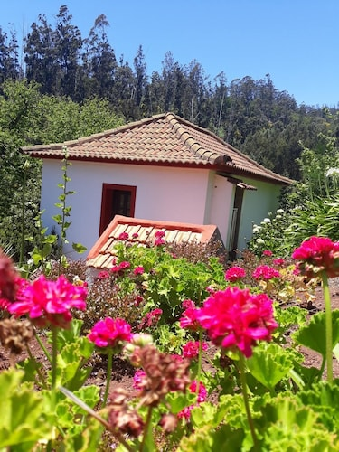 House With one Bedroom in Camacha, With Wonderful Mountain View, Enclo, Santa Cruz