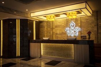 APPLETON HOTEL Lobby