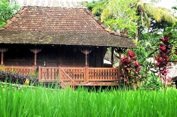 Hotel - Padi Heritage Hotel