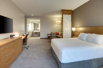 Room, 1 King Bed with Sofa Bed, High Floor