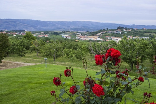 House With 5 Bedrooms in Britiande, With Wonderful Mountain View, Encl, Lamego