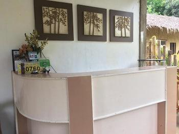 VILLA TRAVELISTA Reception
