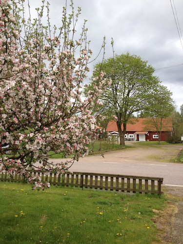 Sjöareds Nya Gästis, Laholm
