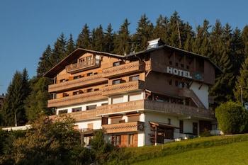 Hotel - Chalet Hôtel Alpen Valley