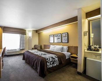 莫亞布斯里克羅克區凱藝飯店 Quality Inn Moab Slickrock Area