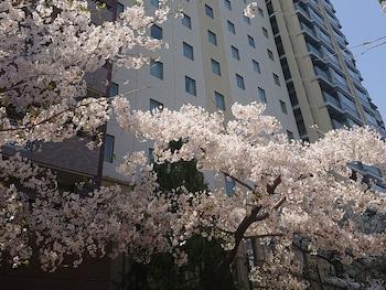 THE ROYAL PARK HOTEL HIROSHIMA RIVERSIDE Exterior detail