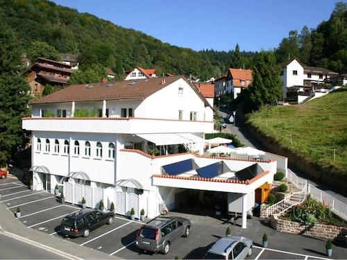 Zum Löwen Heidelberg, Heidelberg