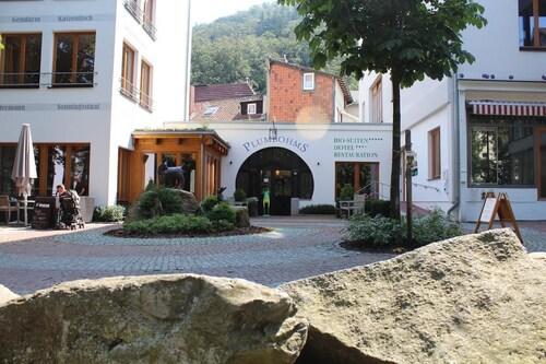 Plumbohms Echt-Harz-Apartments, Goslar