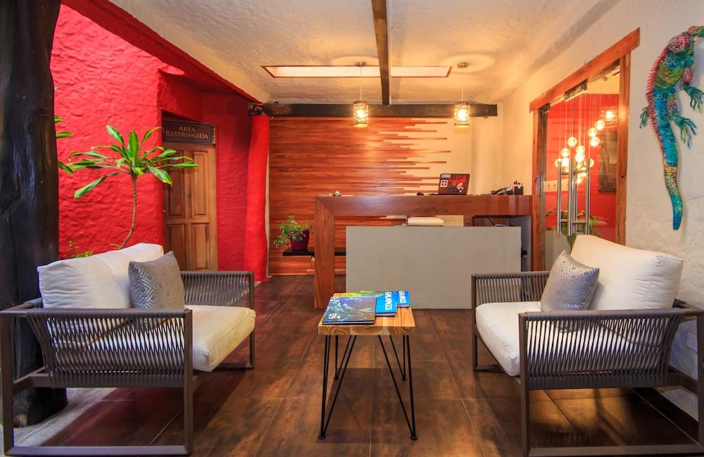 레드 맹그로브 바이 하우간 크루지즈(Red Mangrove by Haugan Cruises) Hotel Image 15 - Reception