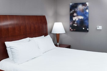 Premium Room, 1 King Bed, Accessible (Roll-In Shower,in-room Drinks&Snacks)