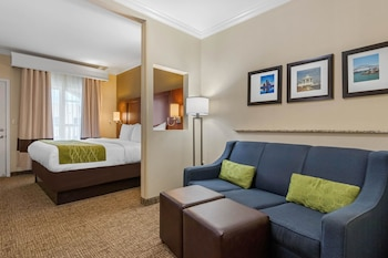 Suite, 1 King bed, Non Smoking with Balcony