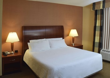 Suite, 1 King Bed, Accessible (Mobility & Hearing - 3x3 Shower)