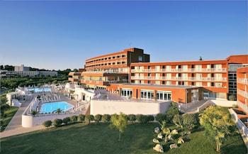 Hotel - Hotel Albatros Plava Laguna
