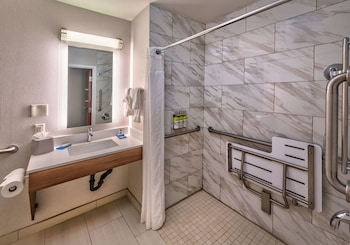 Room, Accessible, Non Smoking (Mobility, Roll-In Shower)