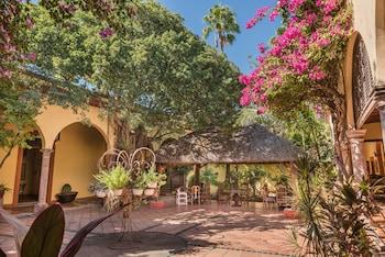 Posada Del Hidalgo Hotel - Property Grounds  - #0