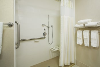 Room, 1 Bedroom, Accessible (Roll-in Shower)