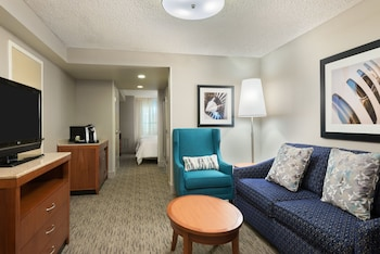 Two Queens Evolution Suite