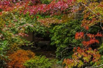 KYOTO NANZENJI RYOKAN YACHIYO Garden View