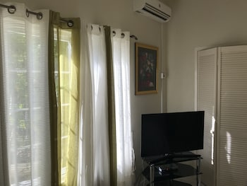 Deluxe Suite, Refrigerator, Annex Building (AC fee not included in rate)