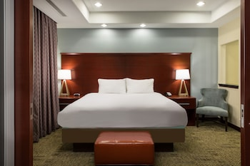 Room, 1 King Bed with Sofa bed, Accessible, Kitchen (Hearing, Roll-In Shower)