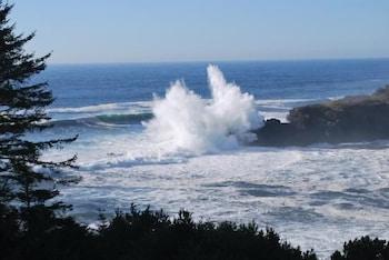 Four Winds Motel - Beach/Ocean View  - #0
